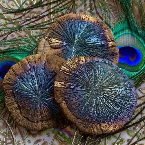 iridescent pyrite suns