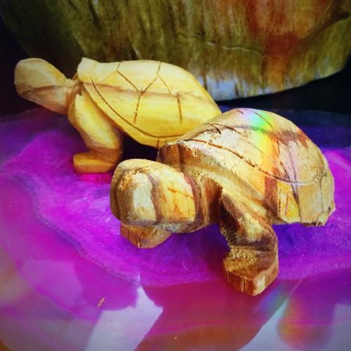 palo santo turtles
