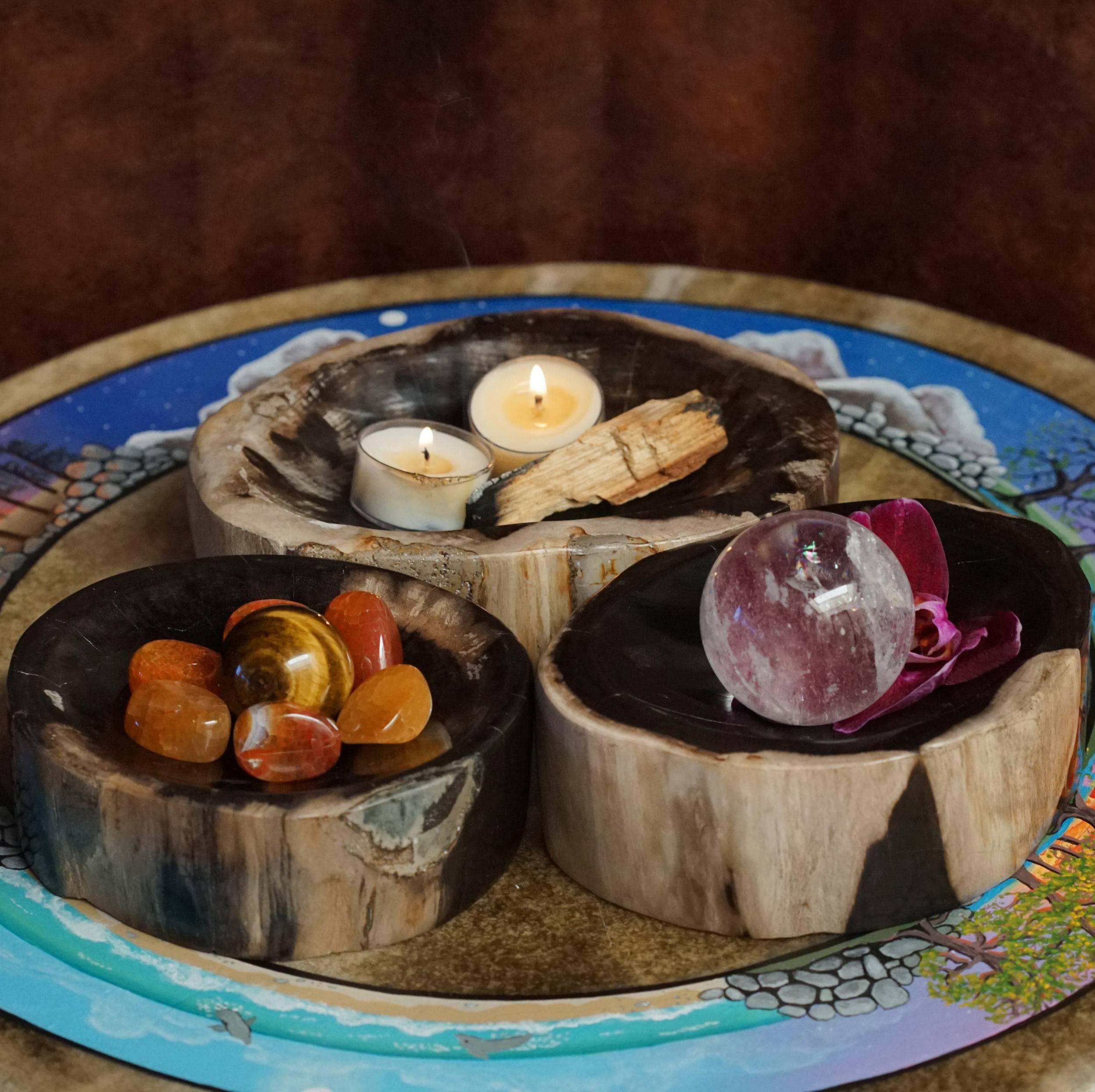polished petrified wood bowls