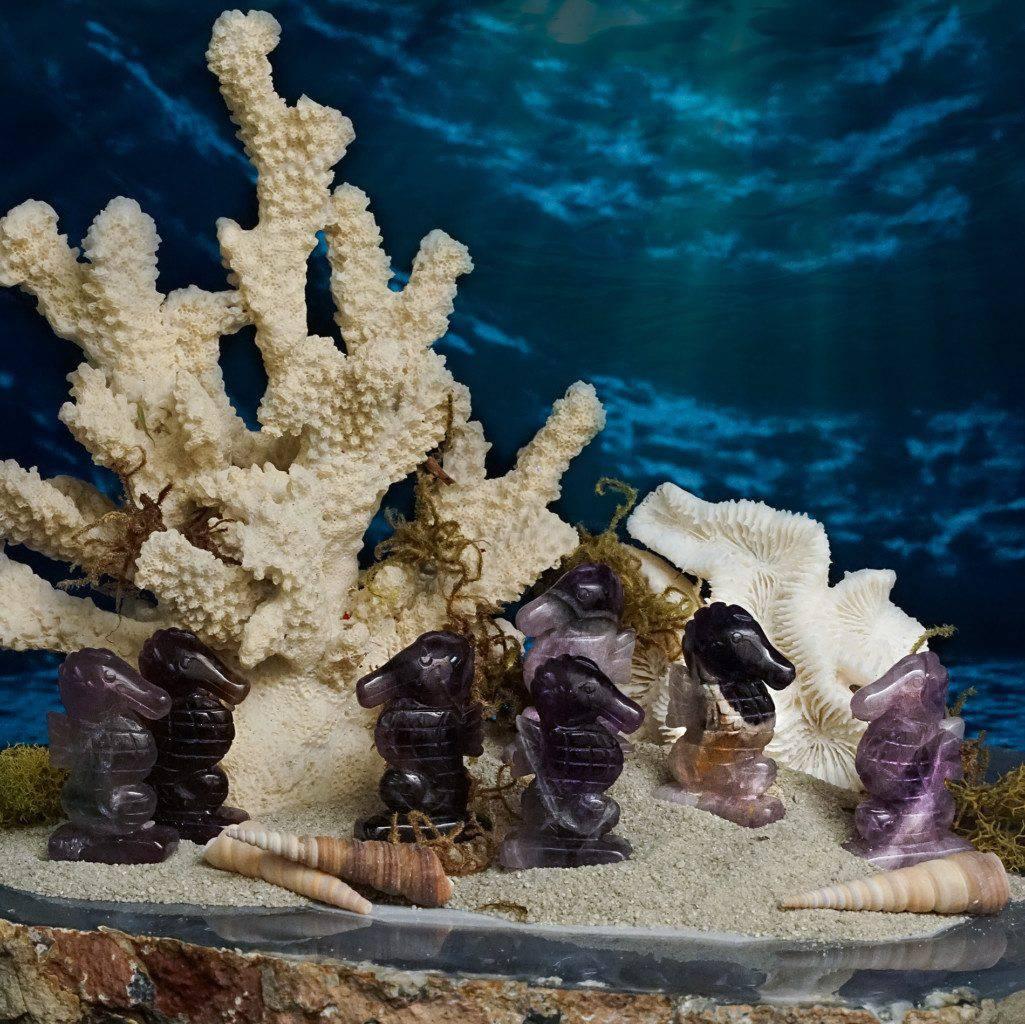 amethyst seahorses