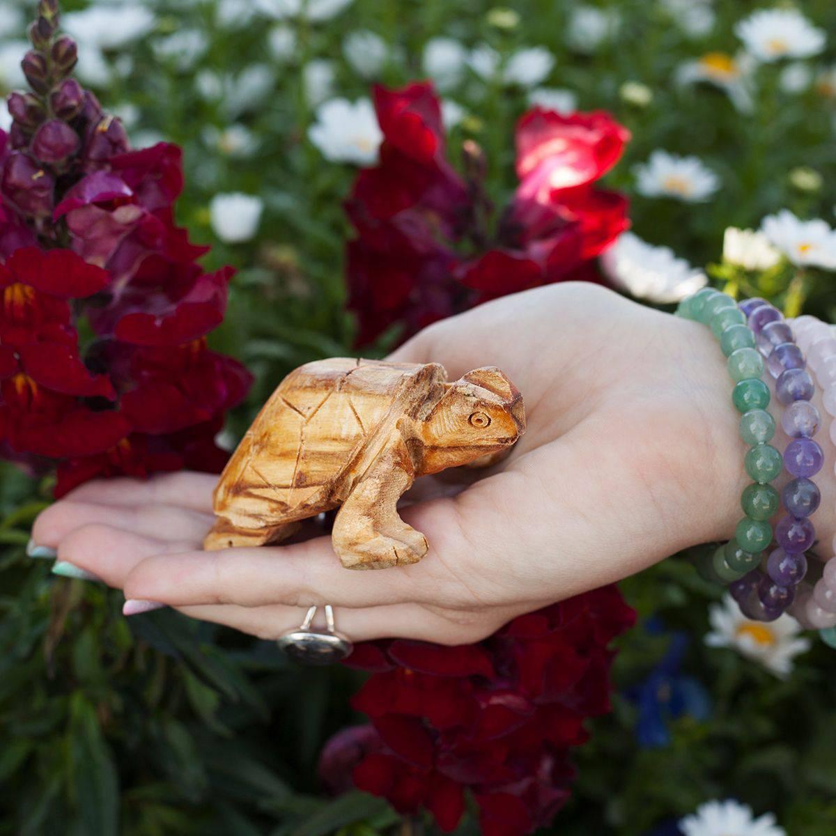 Palo Santo Turtles 4_10