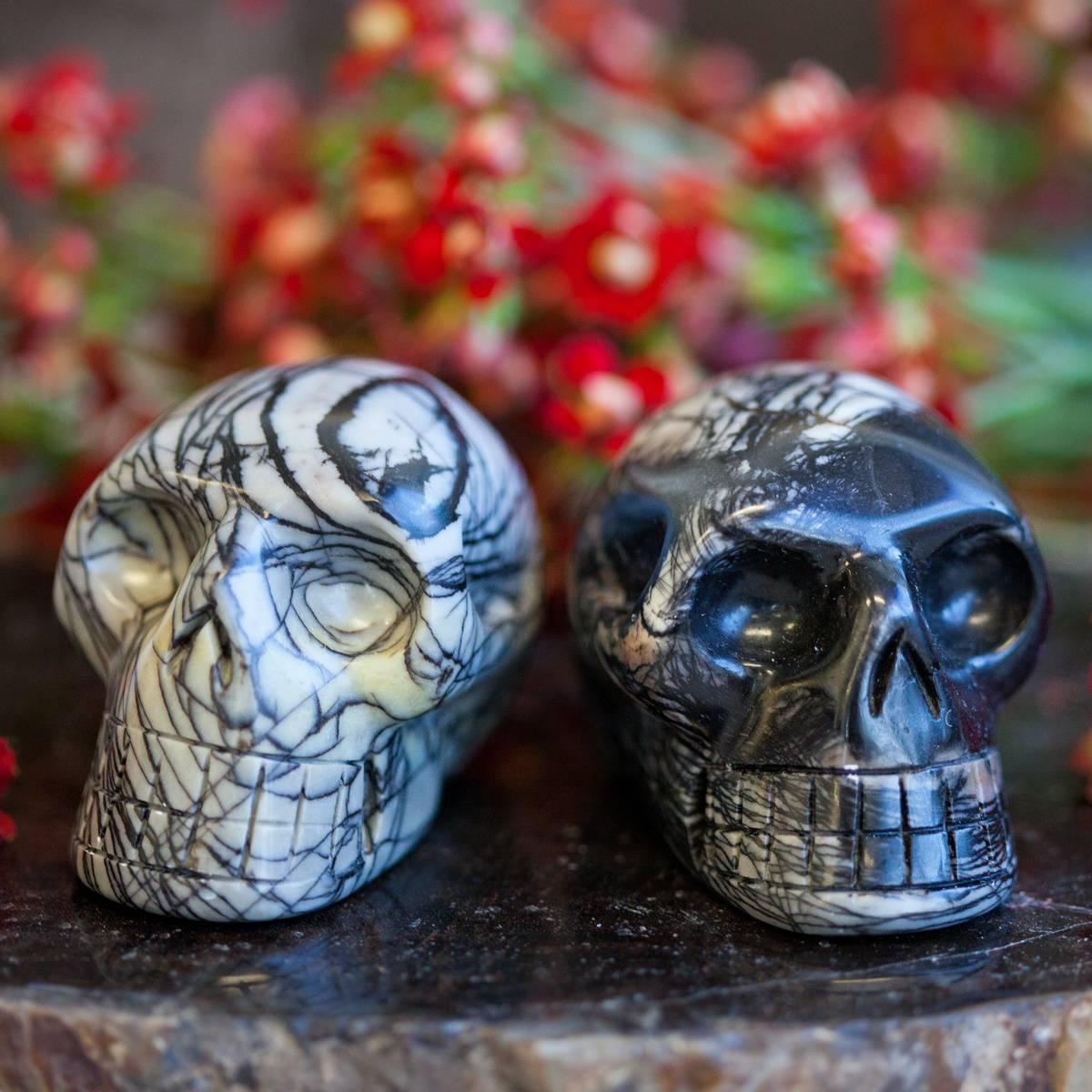 Picasso Jasper Skull 1_15