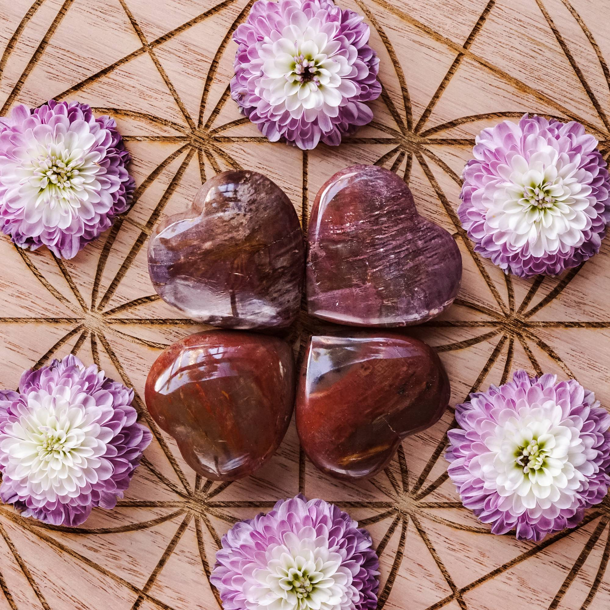 petrified wood hearts