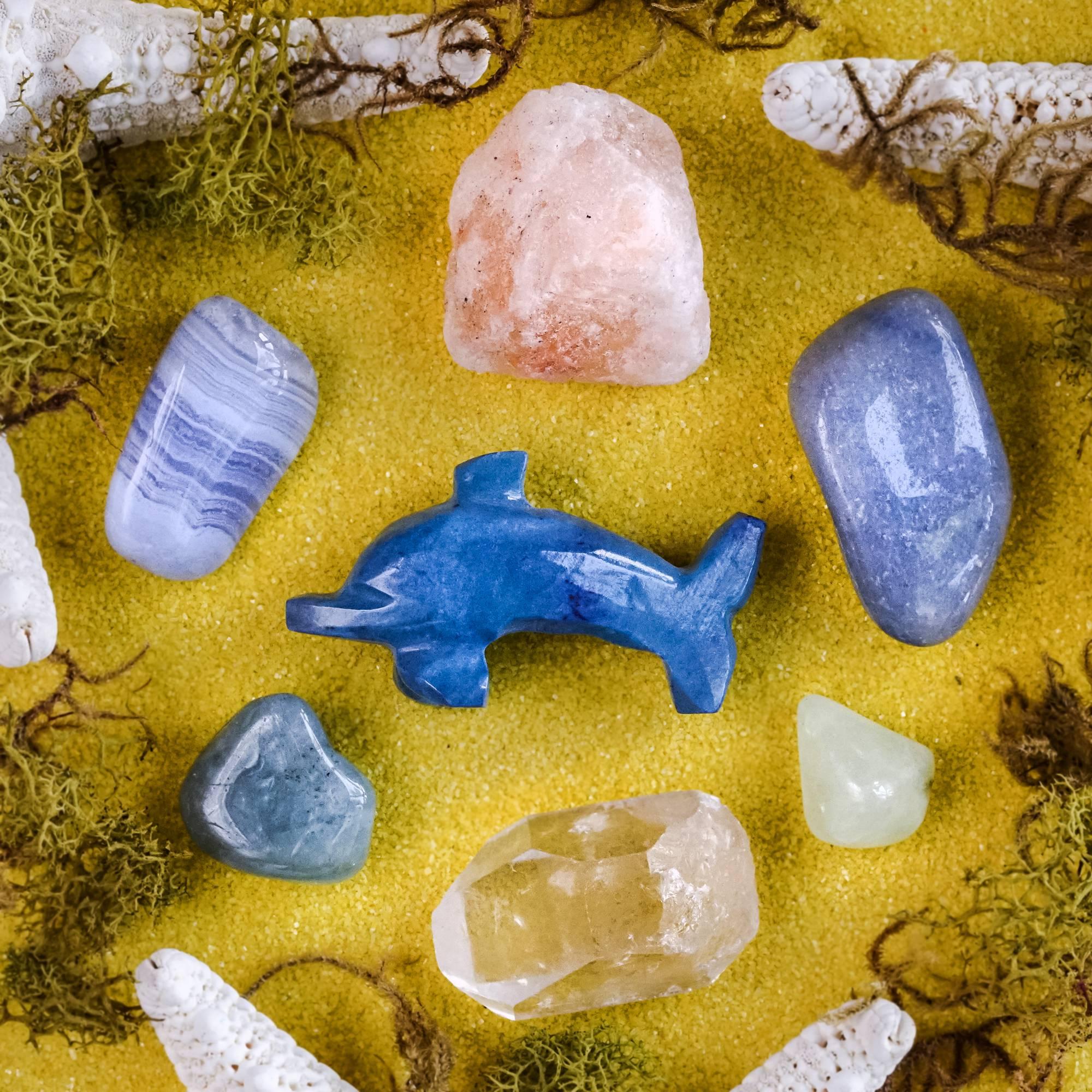 dolphin spirit animal set