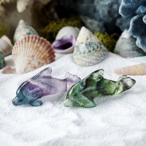fluorite dolphins