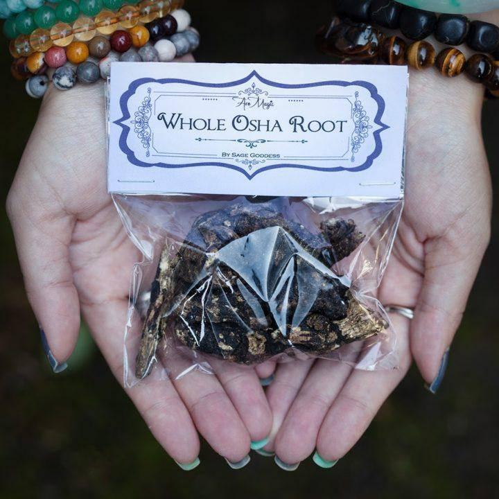 Raw Osha Root