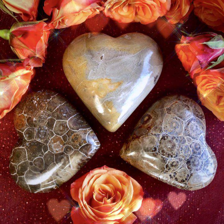 Fossilized_Coral_Fertility_Heart_1of2_1_12