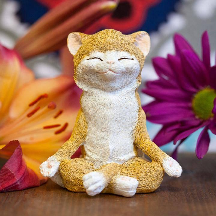 Yoga Cats 5_13