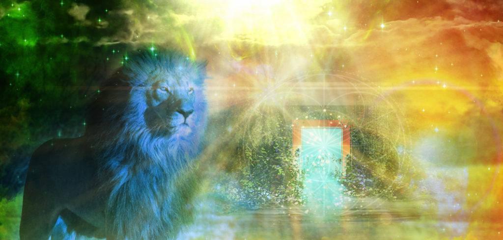 Lionsgate_888_Feature size