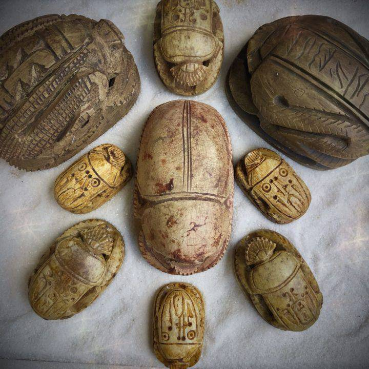 Egyptian_Scarab_Beetles_DD_1of4_8_4