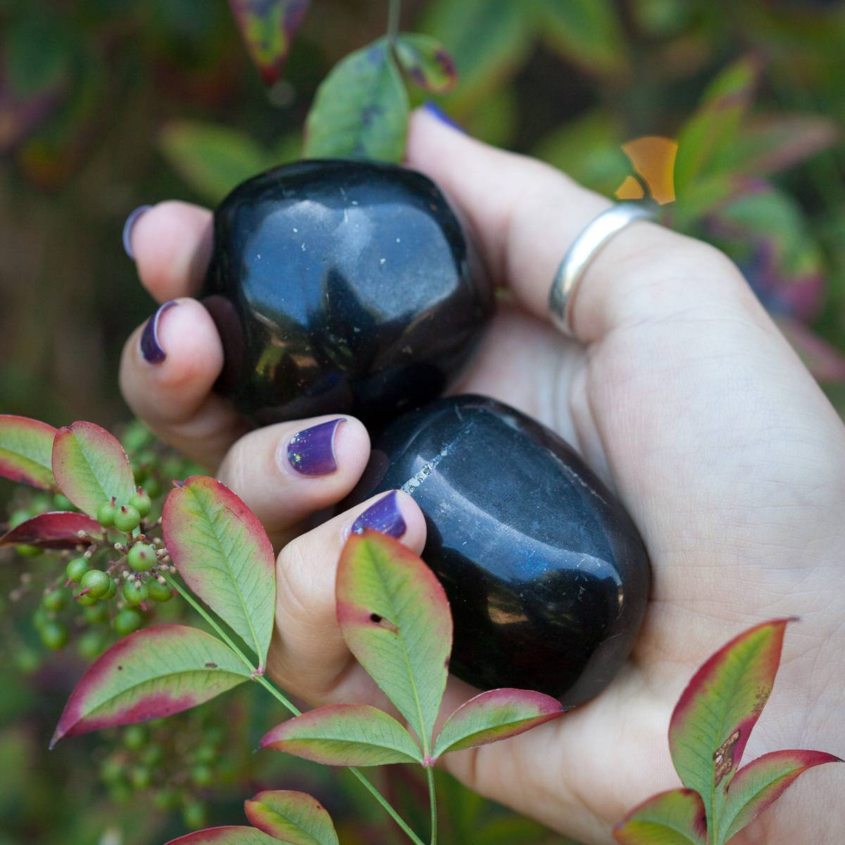 Shungite_Power_Stone_1of3_8_11