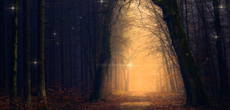 5 Lessons from the Shadow and its importance during Samhain and Dia de los Muertos