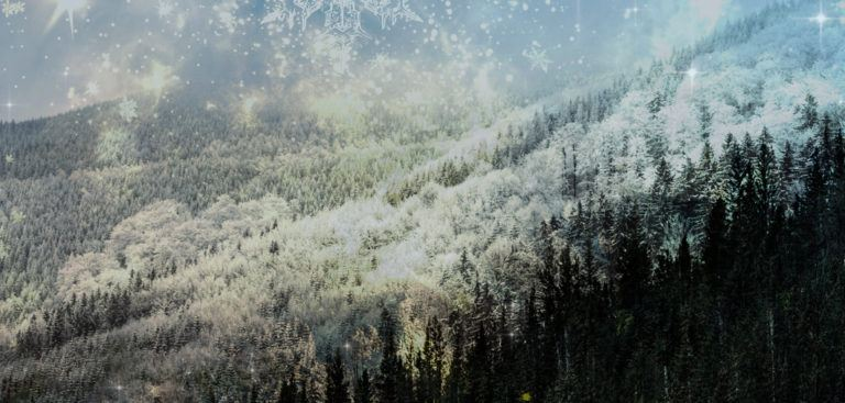 Yule – A Time of Love, Enchantment, and Illumination
